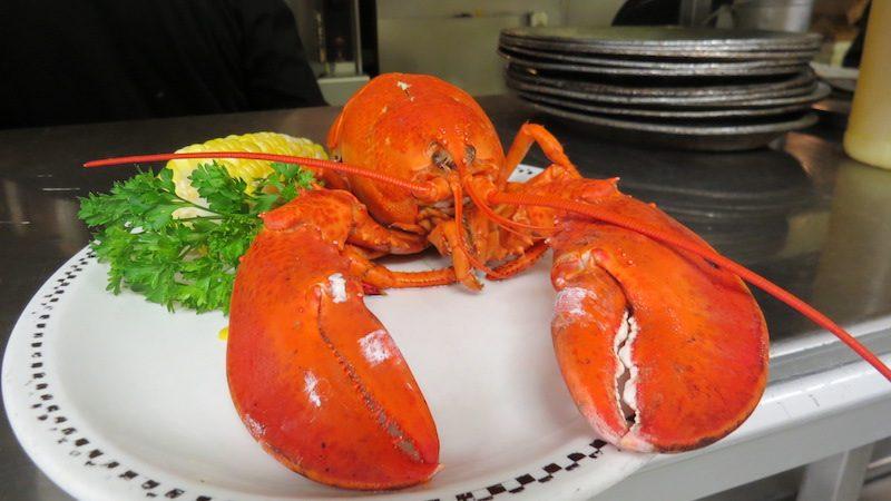 Boiled Lobster.JPG